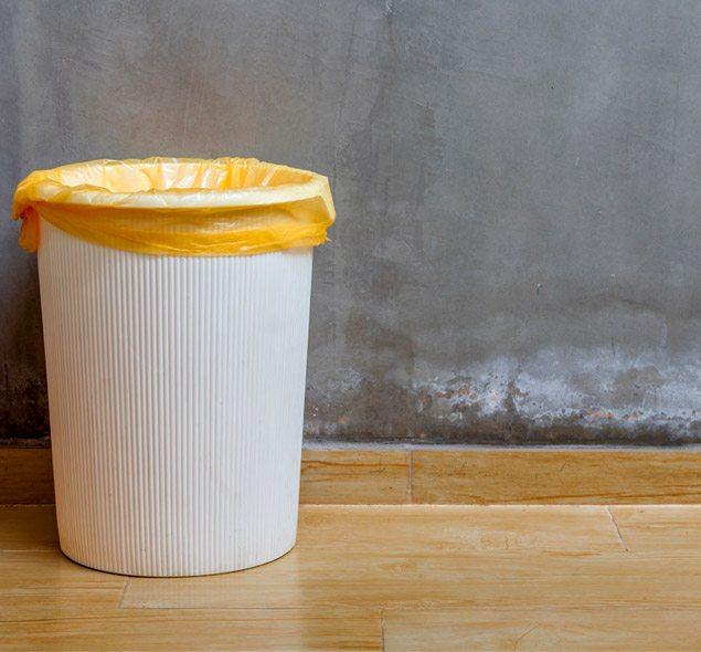 Saiba como usar bem seu lixo doméstico