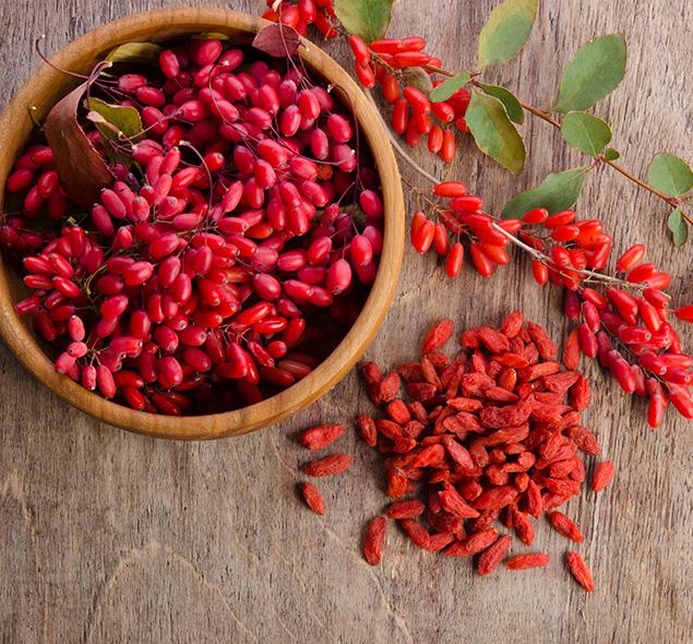 gojiberry-antioxidantes